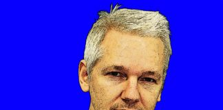 Top 5 Informative Facts You didn't Know About Julian Assange and Wikileaks